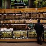 How One Big Gun Seller Chose to End AR-15 Sales: DealBook Briefing